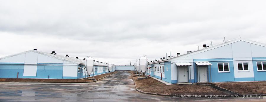 Новости петровский район кировоградская область