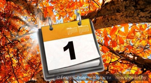 С ноября в Беларуси повышаются пенсии БПМ и детские пособия  Трудовые пенсии вырастут в среднем на 5%