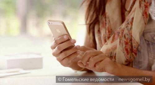 ВКузбассе 40 человек заразились бешенством отживотных