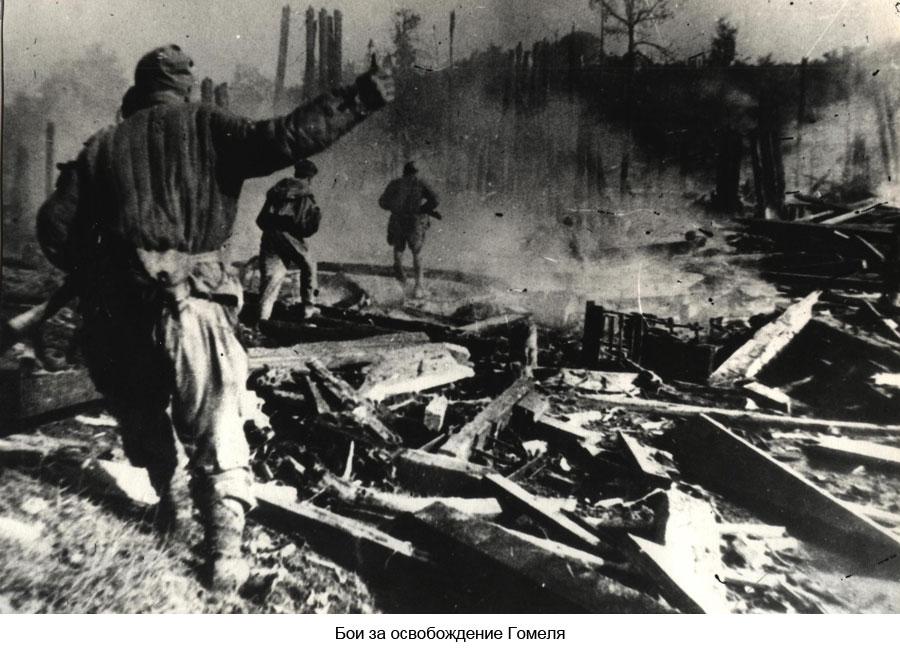 Они сражались за Гомель: 18 фактов об освобождении города над Сожем |  Новости Гомеля